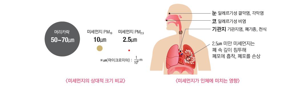 미세먼지의 상대적 크기비교 :  머리카락 50~70마이크로미터, 미세먼지 PM10 - 10마이크로미터, 미세먼지 2.5 - 2.5마이크로미터 / 미세먼지가 인체에 미치는 영향 :  눈 - 알레르기성 결막염, 각막염 코 - 알레르기성 비염 기관지 - 기관지염, 폐기종, 천식 / 2.5마이크로미터 미만 미세먼지는 폐 속 깊이 침투해 허파꽈리에 흡착, 허파꽈리를 손상